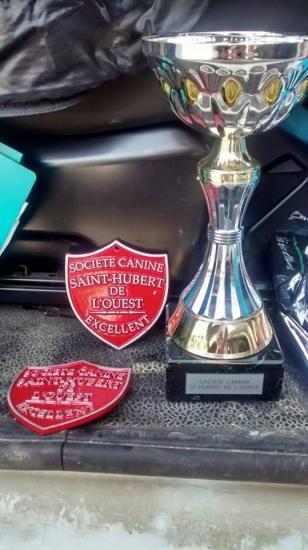 Recompense pornichet 2015